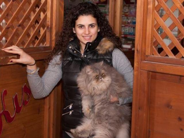 מטפלת עם חתול ביחידה בפנסיון בתל אביב