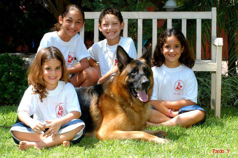 ילדים מצטלמים עם כלבים