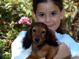 ילדה מחבקת כלב קטן