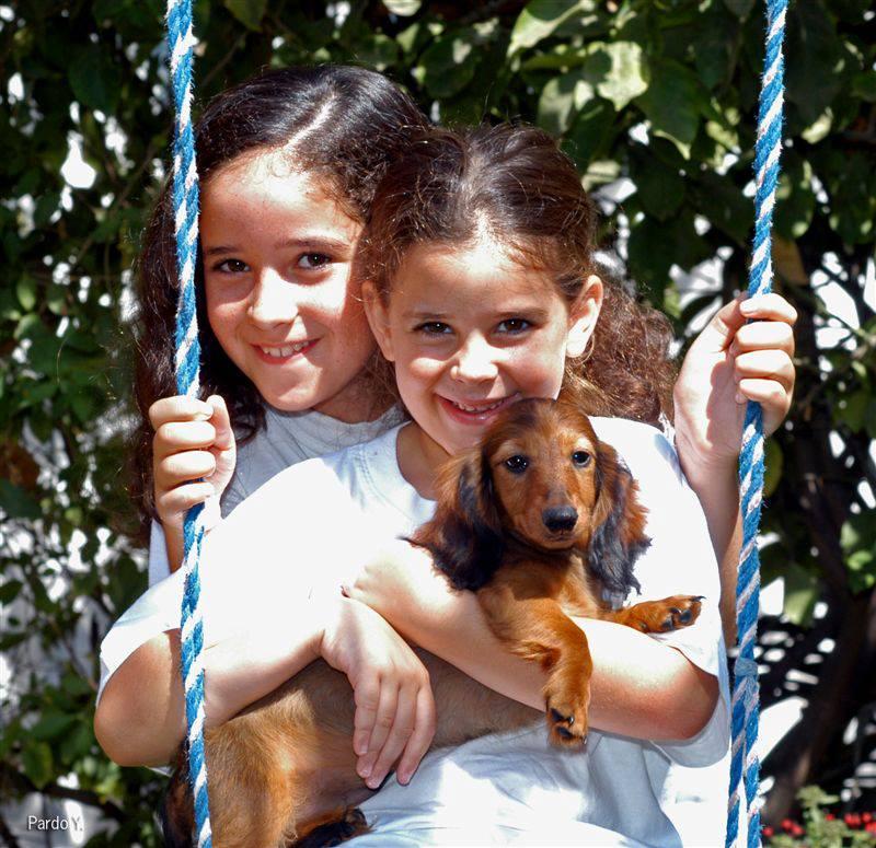 שתי ילדות משחקות עם כלב