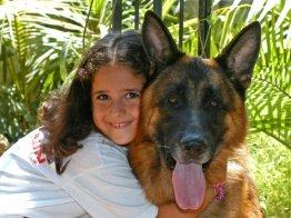 כלב וילדה מתחבקים בפנסיון