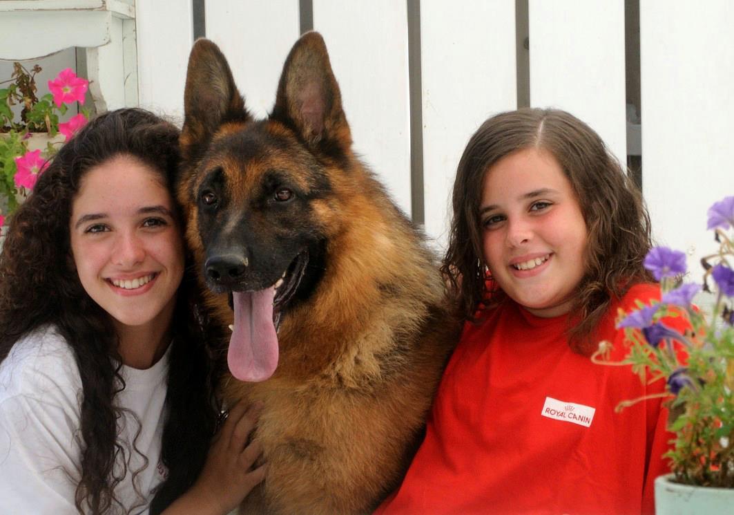 שתי ילדות מחבקות כלב בפנסיון